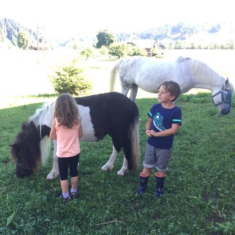 Mit den Pferden aufwachsen