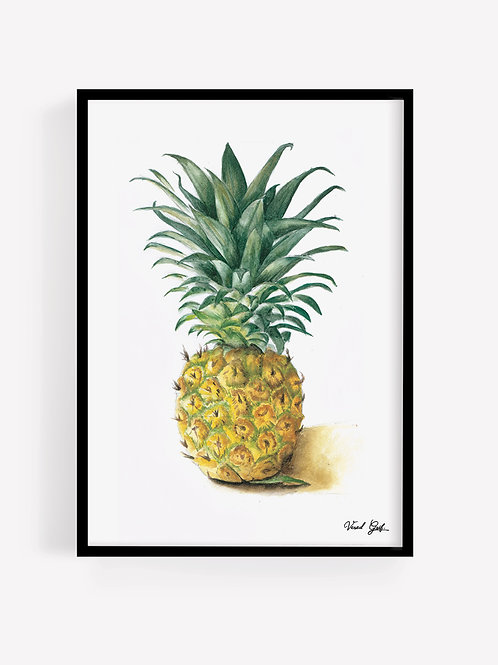 אננס - צבעי מים | Pineapple - watercolor