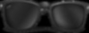 sunglasses010.png
