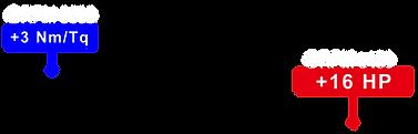 R DYNO_工作區域 1 複本 2.png