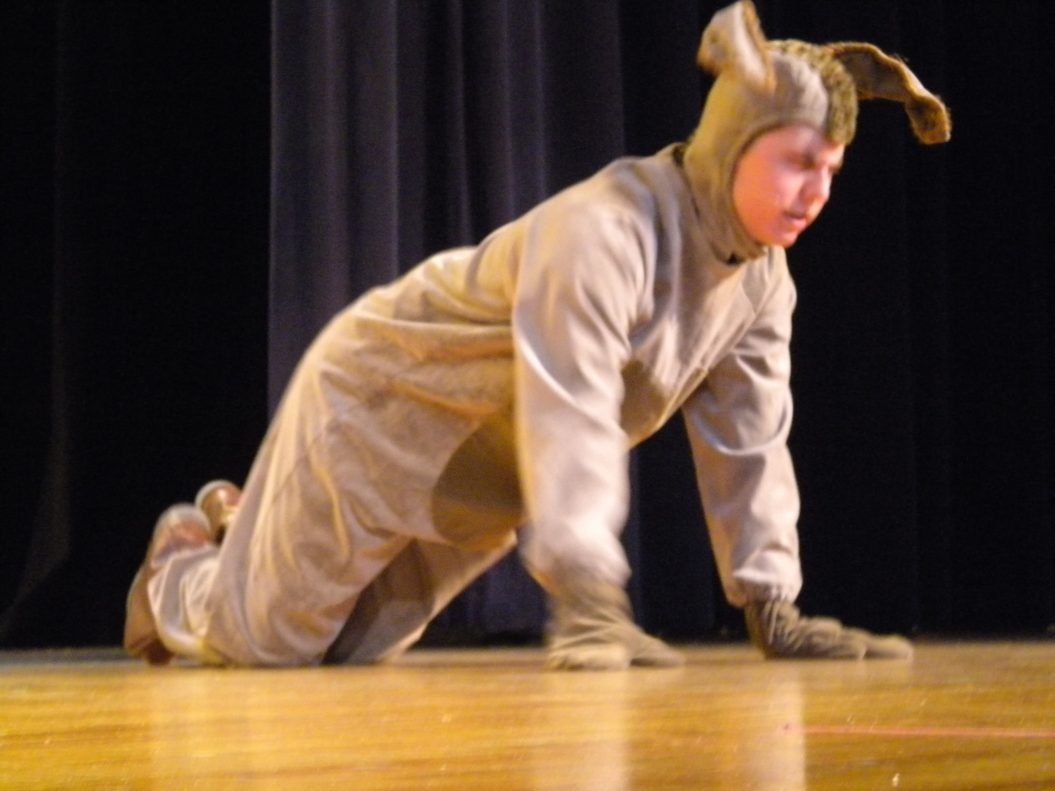 BAILEY IN WINNIE THE POOH 163