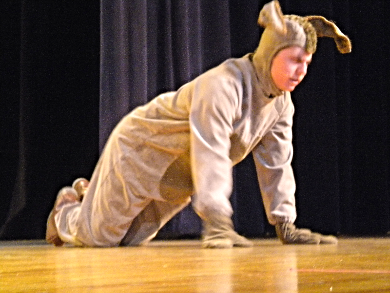 BAILEY IN WINNIE THE POOH 163_edited