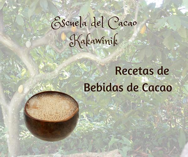 Recetas de Bebidas de Cacao.png