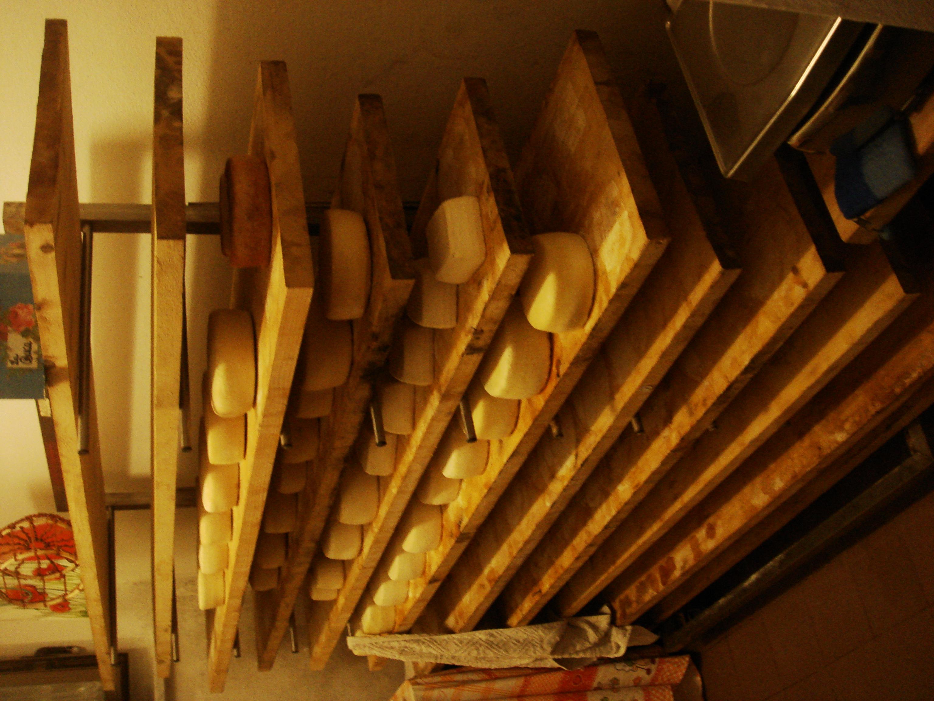 Productores de queso