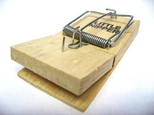 Image of a mouse trap