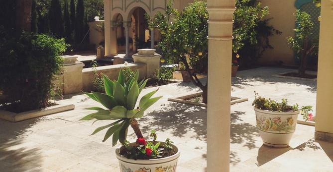 Foto CTM042 jardines2.jpg
