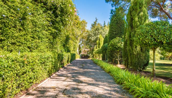 Foto CTM0193 jardines.jpg