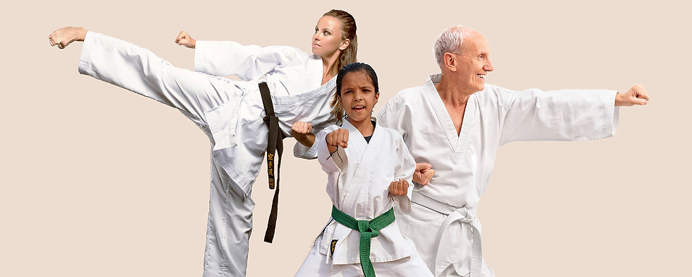 Taekwondo4All_Website intro3_lores.jpg