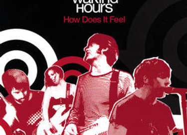 "The Waking Hours ""How Does It Feel"" (Physical CD)"