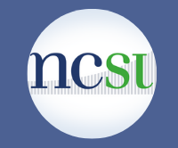 About the NCSI
