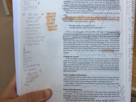 'Bible Basics' Course. Part 1 - Introduction