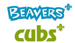 Beavers-Cubs.jpg