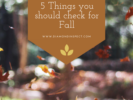 5 Things You Should Check For Fall