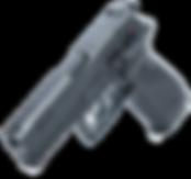 AREX_RZ1_3D_black_nobcg.png