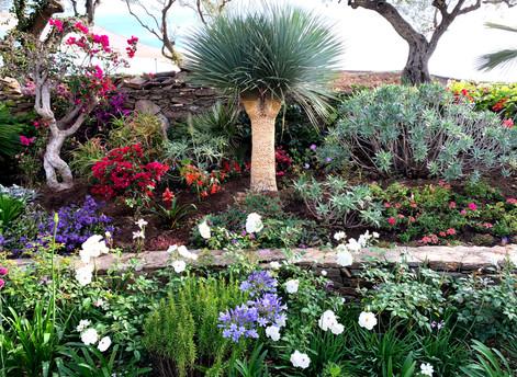 Tropical Garden Front