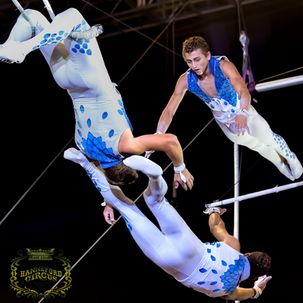 Royal Hanneford Circus will be here this year - get your discounted tickets today!