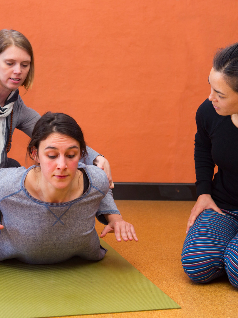 Assisting Teacher Training with Sacred Seeds Yoga School at Bija Yoga Tasmania in Hobart.