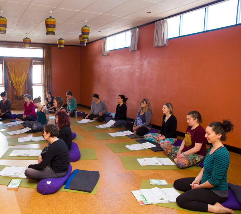 Teacher Training with Sacred Seeds Yoga School Training Program at Bija Yoga Tasmania in Hobart.