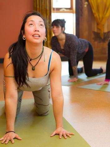 Alignment Practice with Sacred Seeds Yoga School Teacher Training at Bija Yoga Tasmania in Hobart.