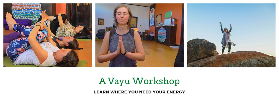 Copy of The Yoga Collective.png