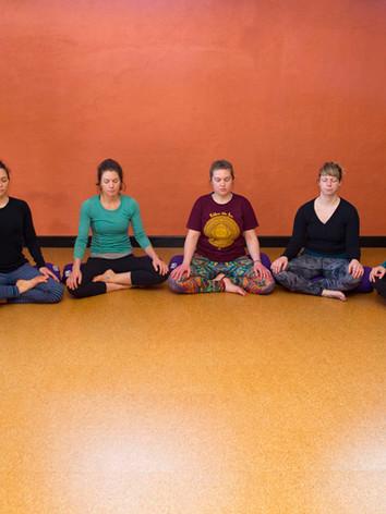 Teacher Training with Sacred Seeds Yoga School at Bija Yoga Tasmania in Hobart.