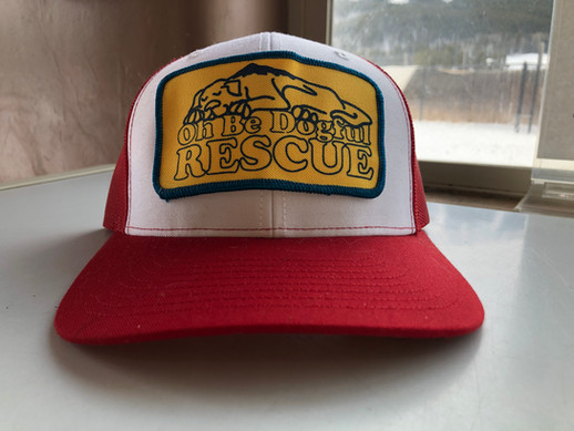 Trucker Hat $30