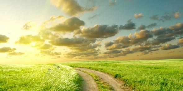 green_pastures.jpg