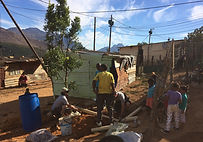 SouthAfrica_TreePlanting_500.jpg