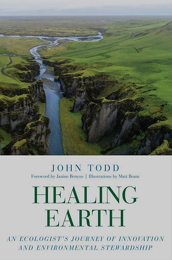 Healing Earth cover.jpg