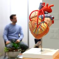 Herzpraxis Schuetzenmatt Basel