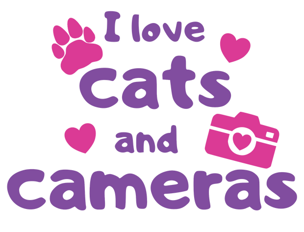 Cats and Cameras.png