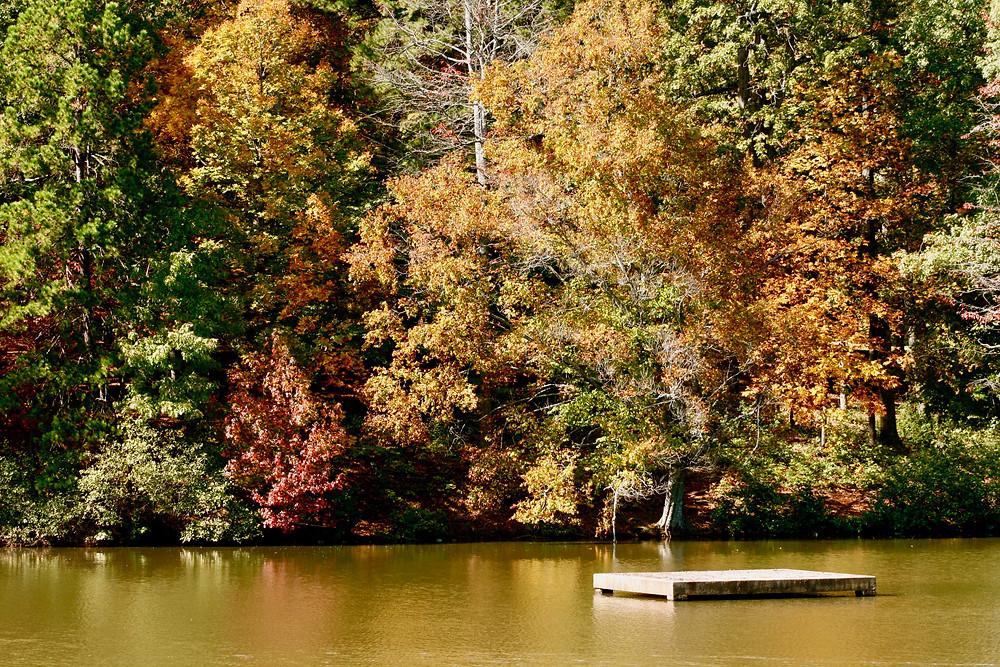 Autumn colors around lake.