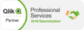 Qlik partner professional services specialization