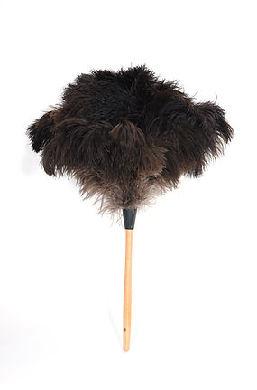 Premium Ostrich feather duster