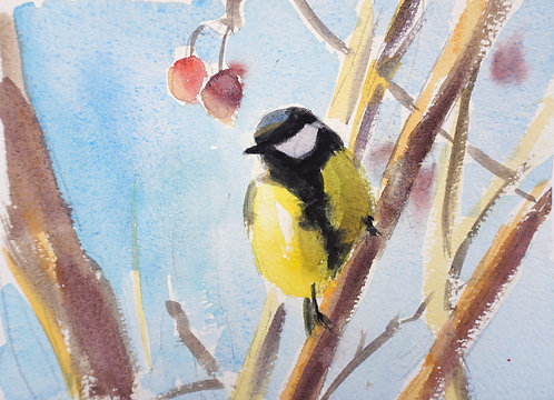 Great Tit and the Cherry Tree
