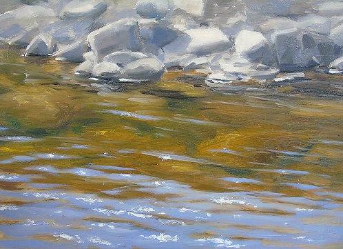 Sparkling River in Spring