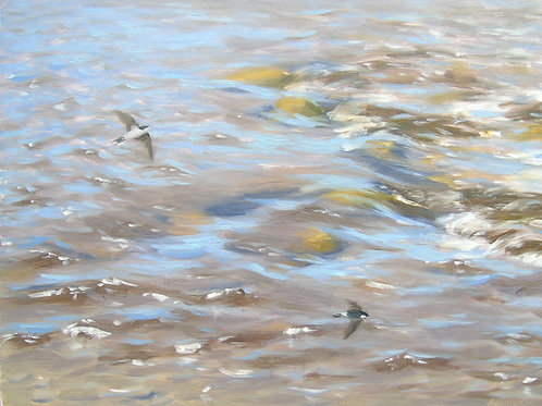 House Martins over River to the Sea