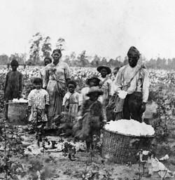 Slave family, Savannah, GA