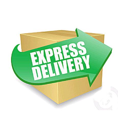 Shipping Fee DHL