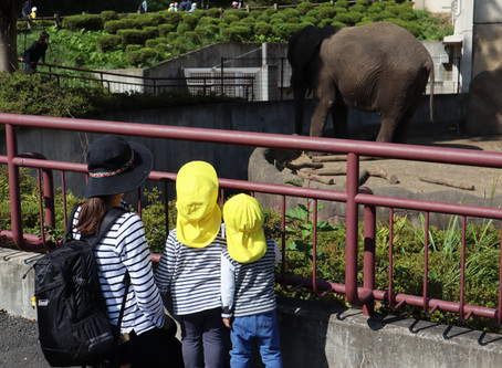 動物公園に行ってきました♪