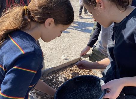 An Organizer's Day as an Archeologist
