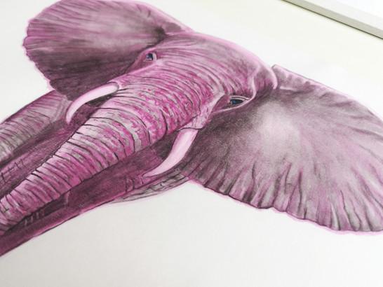 Sabrina Rupprecht - Save Me - Drawing 05