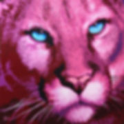Pink-Panther-pink-safari-sabrina-rupprec