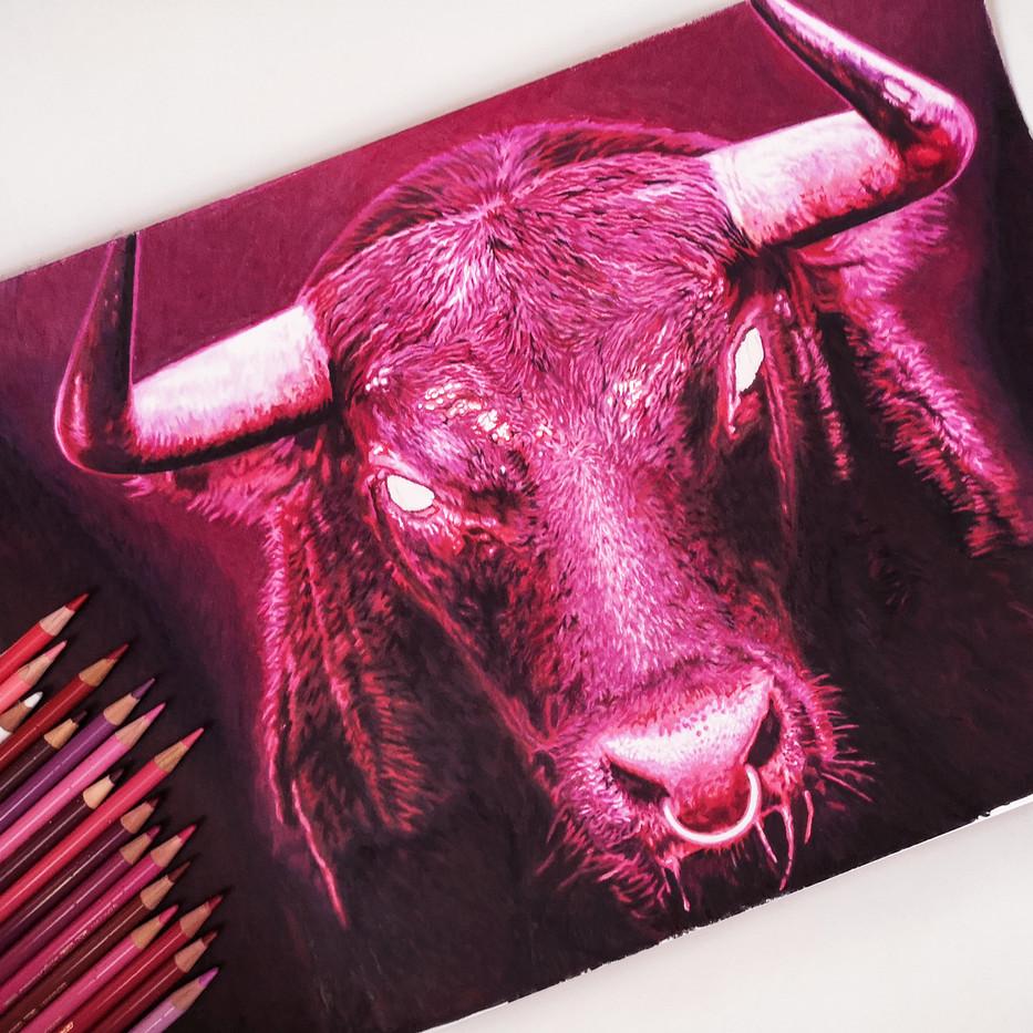 pink-bull-sabrina-rupprecht-pencil-paper