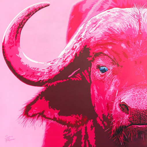 pink-buffalo-pink-safari-sabrina-rupprec