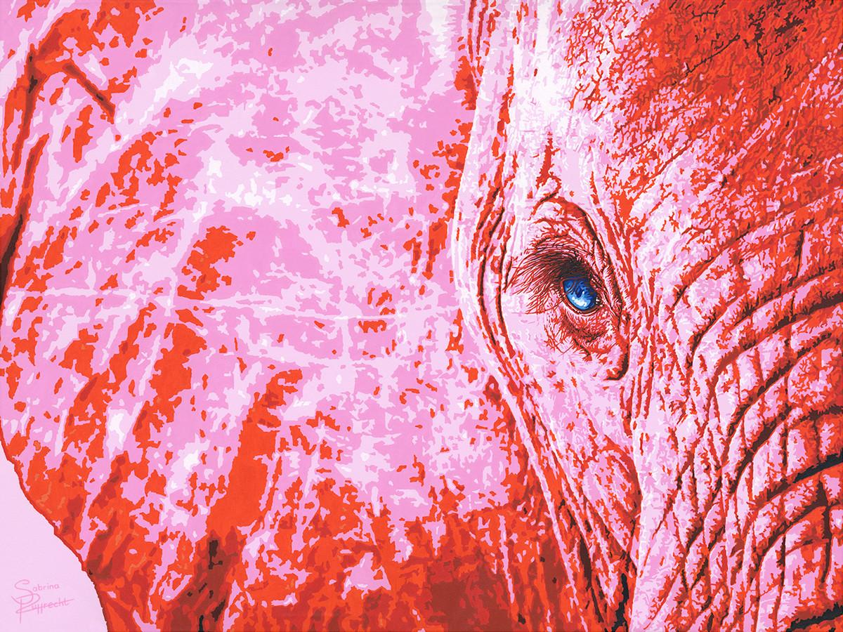 pink-elephant-pink-safari-sabrina-ruppre