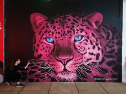 Pink Leopard Mural - Sabrina Rupprecht - 6