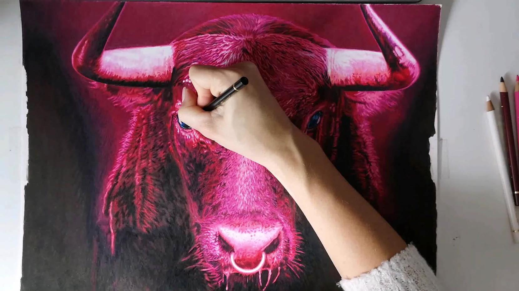 Bull Eyes Timelapse video DaVinciResolve