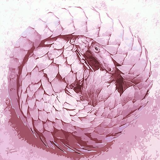 Pangolin-pink-safari-sabrina-rupprecht-a