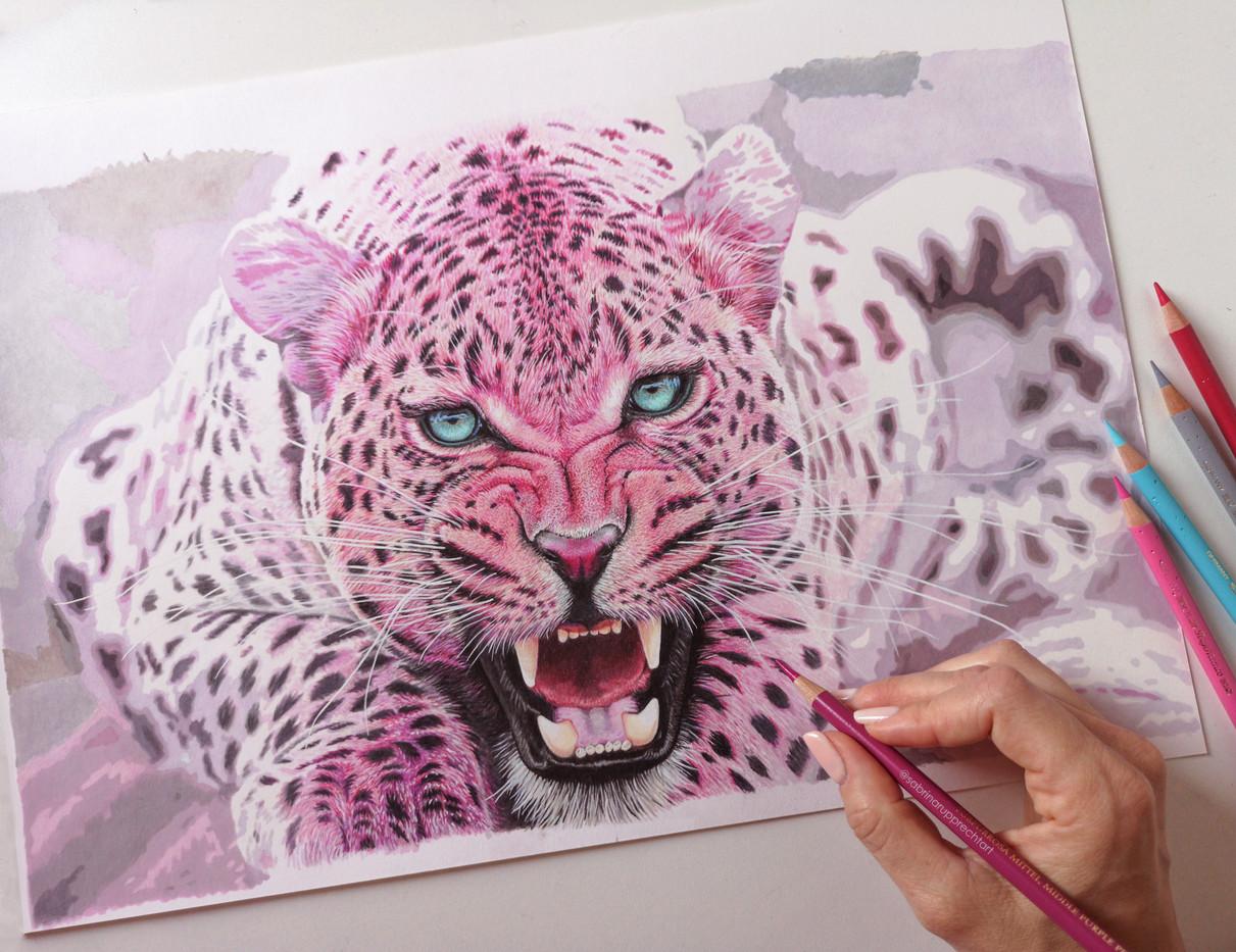 pink-leopard-2-pink-safari-sabrina-ruppr